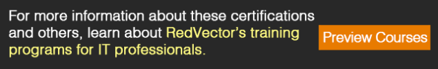 RedVector's training programs for IT professionals.