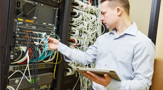RedVector training-programs-for-IT-professionals